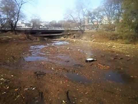 Владивосток: Едросня утонет в фикалиях