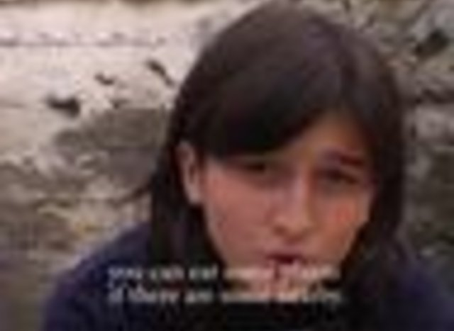 Beslan. The Right to Live / Беслан. Право на жизнь