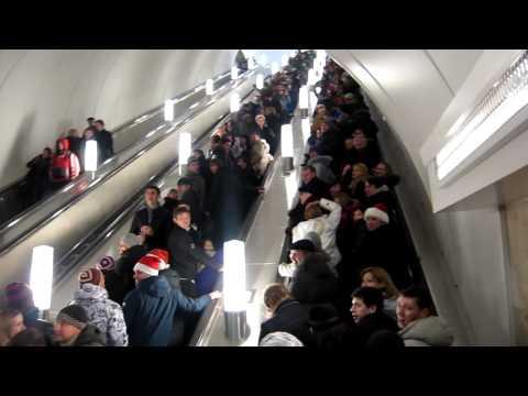 Адмиралтейская ходынка 31 декабря 2011 года: Диагноз Государству 2