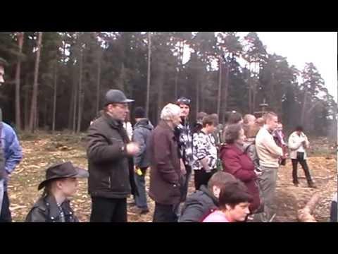 Бой в Цаговском лесу