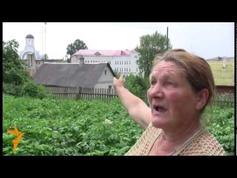 Шведский десант плюшевых мишек в Беларуси: Лукашенко снова нагнули
