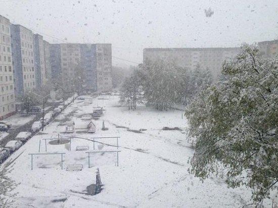 Весна на Алтае: После жары +30 выпал снег