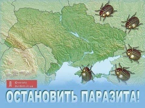 Украина Оккупация Крыма: Референдум Банды путина Гоблина 17 марта 2014 года Прямой эфир / Трансляция