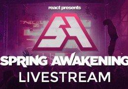 Spring Awakening Music Festival Чикаго 14 июня 2015 года День 3: Прямой эфир Трансляция
