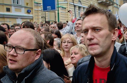 navalnt kashin vybori 2016