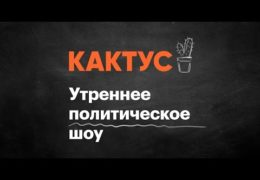Навальный LIVE: КАКТУС 10 ноября 2017 года 09:00 Мск Прямой эфир