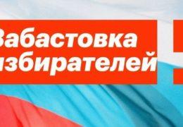 Забастовка избирателей: Акция протеста Россия 28 января 2018 года 12:45 Мск Прямой эфир Трансляция