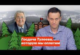 Воровской дворец притон Тулеева в Кемерово: Мерзкая скотина за забором в лесу