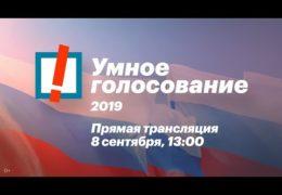 Выборы 08 сентября 2019 года: Поганая власть и Умное голосование / Прямой эфир